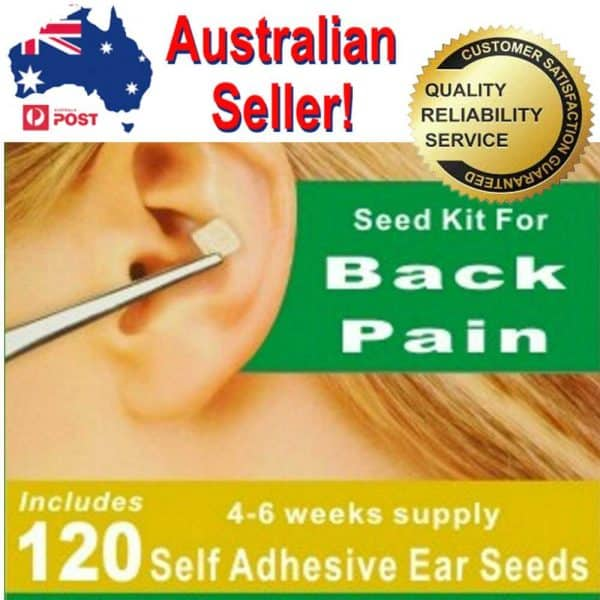 Back Pain Ear Seeds Auriculotherapy Acupuncture Needle ...